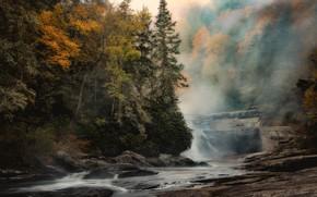 Картинка осень, пейзаж, природа, туман, красота