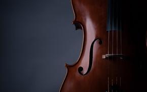 Картинка music, violin, strings, musical instrument, 2k hd background