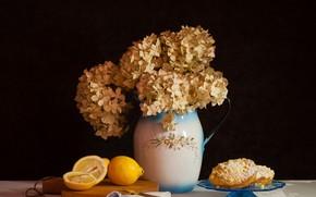 Картинка цветы, лимон, букет, натюрморт, гортензия