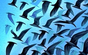 Картинка полет, птицы, абстракция, рендеринг, фон, чайки, крылья, стая, картинка