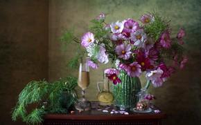 Картинка цветы, вино, бокал, лепестки, банка, сладости, кувшин, натюрморт, столик, графин, космея, Мила Миронова