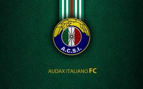 Картинка wallpaper, sport, logo, football, Audax Italiano