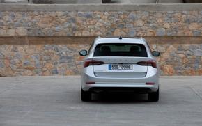 Картинка вид сзади, Škoda, универсал, Skoda, Octavia, 2020, Octavia Combi
