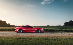 Картинка Mustang, Ford, вид сбоку, 2018, Mustang GT, by Jimmy Zhang