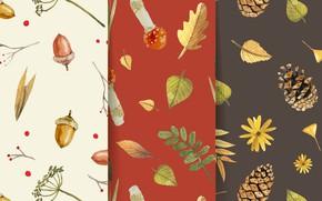 Картинка фон, текстура, patterns, Autumn, Background, Leaves