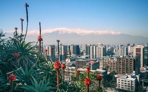 Картинка горы, дома, Чили, Santiago, Chile, Сантьяго, view of the Andes, Санта Лючия, Santa Lucia