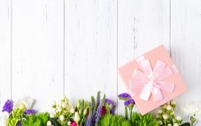 Картинка цветы, праздник, подарок, бант
