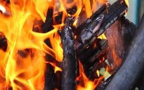 Картинка огонь, дрова, мангал