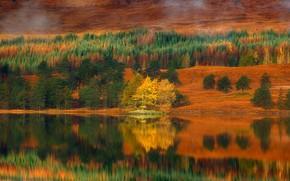 Картинка осень, Шотландия, озеро Талла