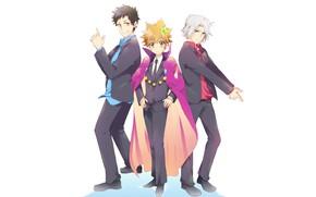 Картинка аниме, арт, парни, король, Katekyo Hitman Reborn, телохранители, Учитель мафиози Реборн