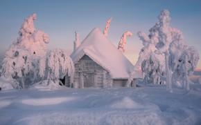Картинка зима, снег, деревья, избушка, сугробы, домик, Финляндия, Лапландия, зимняя сказка