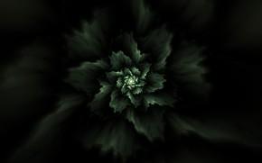 Картинка абстракция, растение, фрактал, abstraction, plant, fractal
