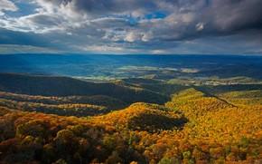 Обои осень, лес, облака, горы, панорама, США, Виргиния, Национальный парк, Аппалачи, Голубой хребет, Блу-Ридж, Шенандооа