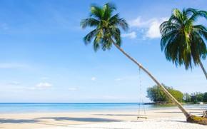 Картинка песок, море, пляж, лето, небо, солнце, пальмы, берег, summer, beach, sea, seascape, beautiful, sand, paradise, …