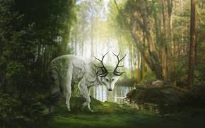 Картинка лес, природа, пруд, волк, фэнтези, рога, by Fiirewolf