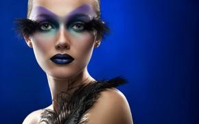 Картинка взгляд, девушка, синий, лицо, стиль, фон, чёрные, модель, портрет, перья, макияж, прическа, красотка