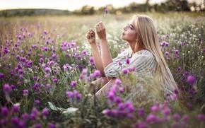 Картинка поле, лето, девушка, цветы, природа, волосы, Сергей Сорокин, Люба Иванова
