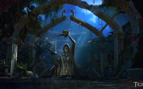 Картинка ночь, лампы, статуя, лунный свет, Tera