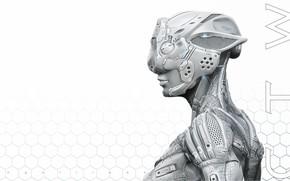 Картинка робот, профиль, андроид, ячейки, CTW Suite