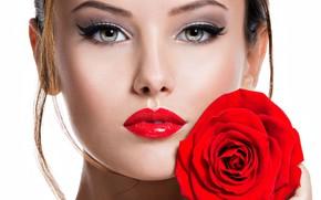 Картинка девушка, роза, портрет, макияж, фотомодель, Valua Vitaly