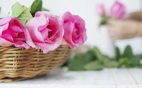Картинка розы, букет, корзинка, wood, roses