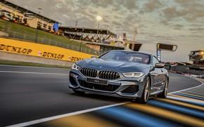 Картинка асфальт, купе, трасса, BMW, Coupe, 2018, серо-синий, 8-Series, бледно-синий, M850i xDrive, 8er, G15