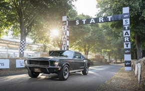 Картинка Ford, Fastback, 2018, 1968, Mustang GT, Bullitt, Goodwood