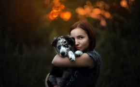Обои девушка, собака, щенок