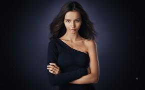 Картинка девушка, фон, портрет, Alexander Vinogradov