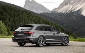 Картинка Audi, универсал, пятидверный, 2019, A4 Avant, S4 Avant