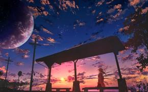 Картинка небо, девушка, облака, закат, вечер, ツチヤ
