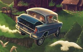 Картинка сова, нора, форд, гарри поттер, harry potter, рон уизли, тайная комната, Weasley