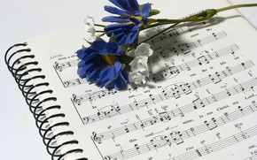 Картинка цветок, ноты, музыка, тетрадь