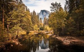 Картинка осень, лес, вода, деревья, горы, отражение, скалы, Калифорния, США, речка, жёлтые, Yosemite National Park, Half …