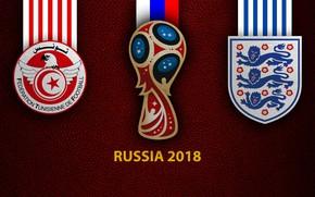 Картинка wallpaper, sport, logo, football, FIFA World Cup, Russia 2018, Tunisia vs England