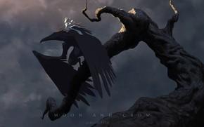 Картинка fantasy, crow, fairy, wings, moonlight, artist, digital art, artwork, branch, fantasy art, creature, James Zapata, …