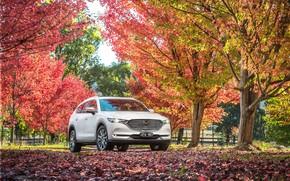 Картинка машина, осень, Mazda, белый цвет