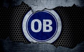 Картинка wallpaper, sport, logo, football, Odense