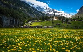 Картинка цветы, горы, дома, Швейцария, деревня, Альпы, луг, одуванчики, Switzerland, Alps, Urnerboden, Кантон Ури, Canton of …