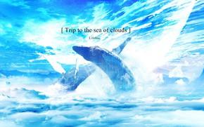 Картинка облака, фэнтези, киты, фразы