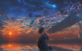 Картинка небо, вода, девушка, солнце, закат, падающая звезда