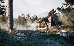 Картинка лес, горы, дом, пенёк, Into the Woods