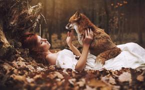 Картинка осень, лес, девушка, лиса, лежит, рыжая