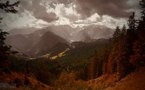 Картинка осень, лес, небо, облака, деревья, горы, холмы, вершины, высота, вечер, ели