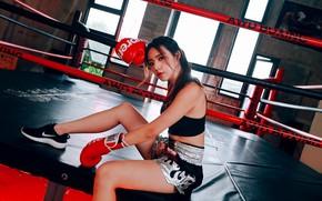 Картинка девушка, лицо, поза, спорт, бокс, ринг