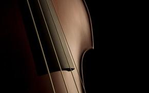 Обои макро, фон, скрипка