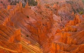Картинка песок, солнце, деревья, камни, скалы, каньон, США, вид сверху, Cedar Breaks National Monument