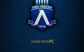 Картинка wallpaper, sport, logo, football, Levski Sofia