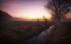 Картинка поле, закат, природа, туман