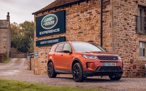 Картинка авто, дом, Land Rover, кроссовер, Discovery Sport, D180